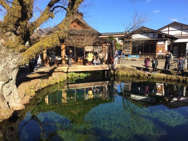Oshinohakkai Yamanashi Japan Water Beauty In Nature Enjoying Life Nature