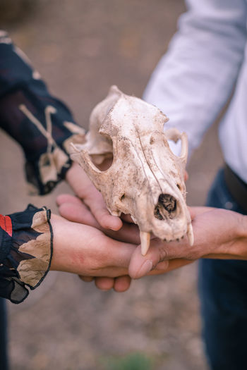 Midsection of couple holding animal skull