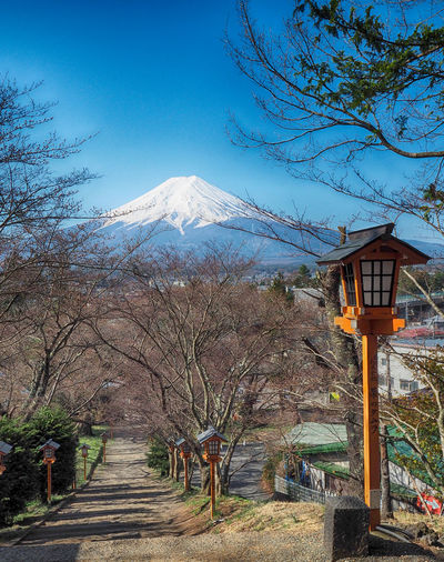 SUMMER & SNOW Beauty In Nature Blue Sky Japan Photography Jepang Mountain Mt.Fuji Nature Summer