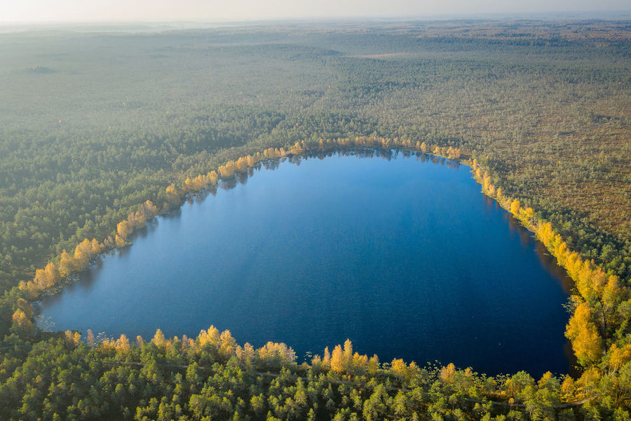 Lithuanian nature Lithuania Nature Lithuania Travel Lithuanian Nature Nature Park Drone  Aerial View Mavic 2 Mavic 2 Pro Europe Aerial DJI X Eyeem Lake Beauty In Nature Scenics - Nature Water Tranquility Environment Tranquil Scene Landscape Plant Day High Angle View No People Tree Non-urban Scene Idyllic Outdoors Growth Land