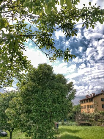 Hdr_Collection Parco Del Curone Farmland