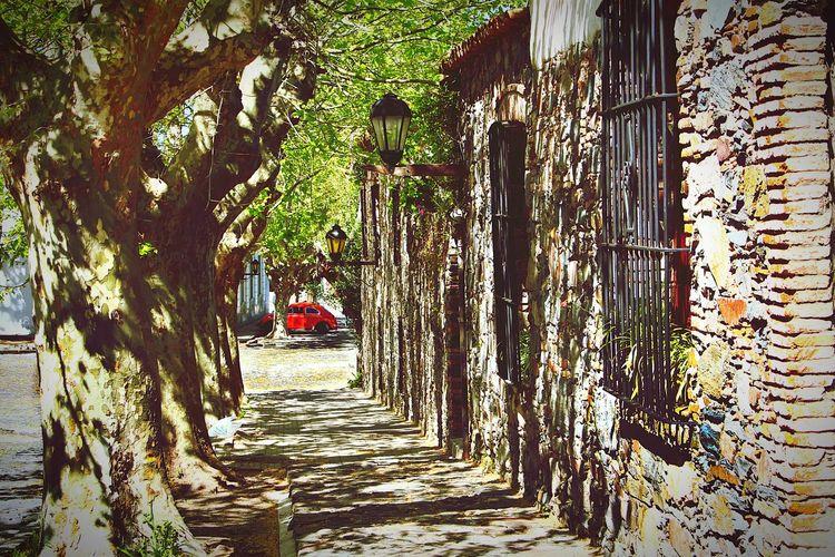 Colonia del Sacramebto
