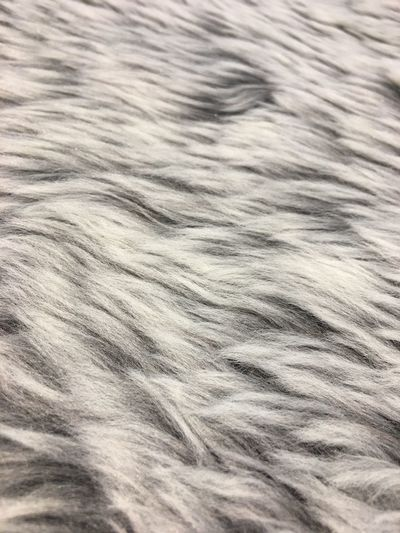 Gray color artificial fur as background. Backgrounds Full Frame Animal Hair One Animal No People Pattern Domestic Animals Textured  Close-up