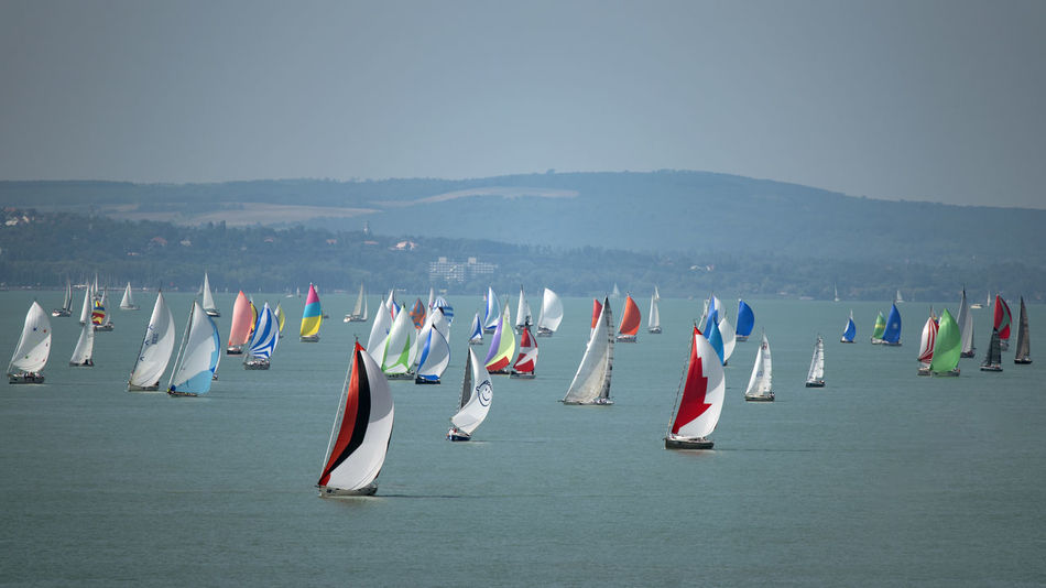 Blue Ribbon Balaton Beauty In Nature Day In A Row Lake Land Large Group Of Objects Mountain Multi Colored Nature No People Non-urban Scene Outdoors Race Sailboat Sailing Sailing Boat Scenics - Nature Security Side By Side Sky Tranquility Transportation Water