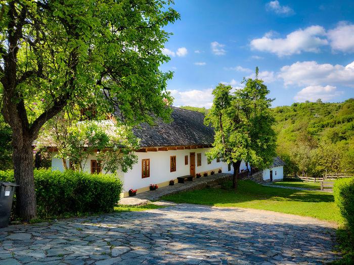 Village Harmony