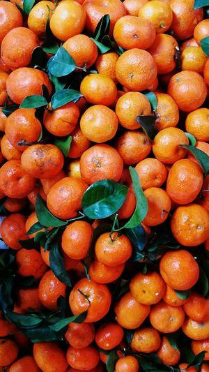 Food Healthy Eating Freshness Backgrounds Abundance Citrus Fruit Large Group Of Objects Close-up Day Full Frame Fruit Kamquat Hong Kong EyeEmNewHere