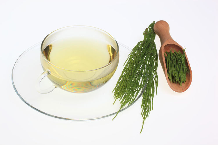 medicinal tea made of common horsetail, Equisetum arvense, field horsetail Equisetum Arvense Herb Horsetail Tea Close-up Common Horsetail Crockery Cut Out Drink Food Food And Drink Freshness Green Color Healthy Eating Herb Herbtea High Angle View Indoors  Leaf Medicinal Plant Medicinal Tea Nature No People Plant Part Still Life Studio Shot Tea Wellbeing White Background