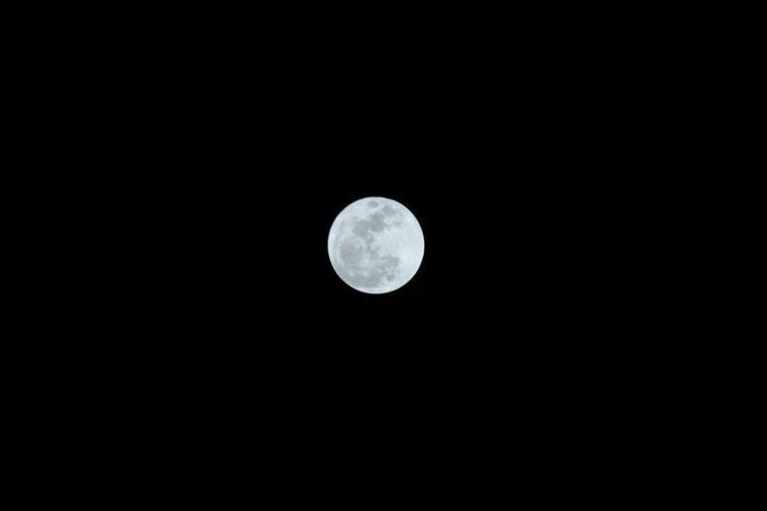 Wolf moon Wolf Moon Moon Full Moon Astronomy Night Copy Space Moon Surface Nature Planetary Moon