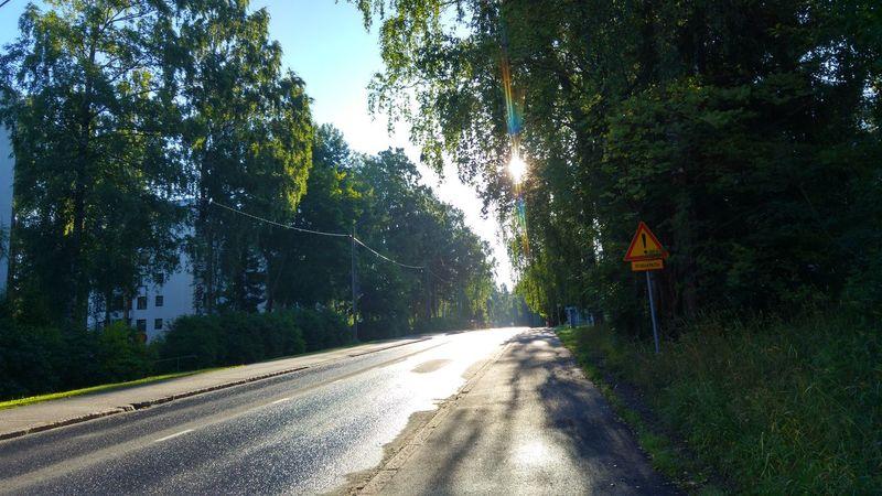 Good morning to you ©️JaniVauhkonen The Way Forward Tree Road Outdoors Day No People Nature Sky JaniVauhkonen Lgg4photography LGG4