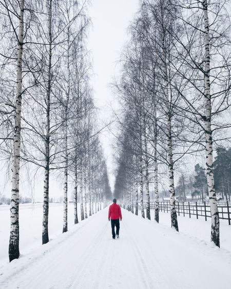 Man walking on the road at winter time in Finland Cloudy Finland Straight Adult Bare Tree Beauty In Nature Cold Temperature Day Hiker Landscape Mood Nature One Man Only One Person Outdoors Real People Rear View Red Jacket Road Scenics Snow The Way Forward Tree White Color Winter