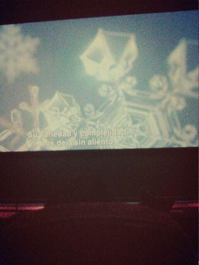 """y aca estoy esperando a que termine este documental del """"hielo"""" Rockin' Cine Atlântico(Luanda/Angola)  Friday ✌"""