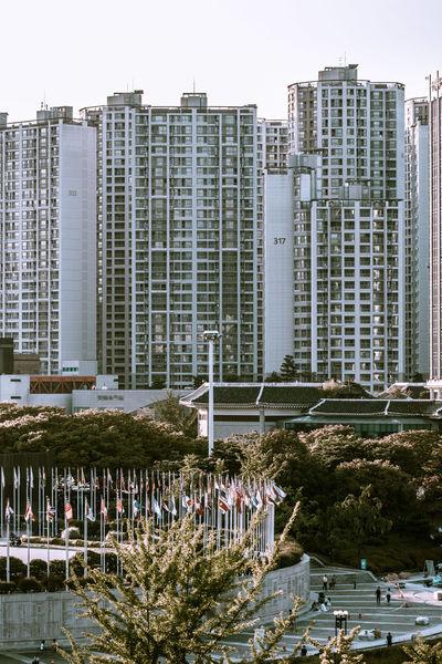Architecture Building City City Life City Life Cityscapes EyeEm Best Shots EyeEm Korea Scenery Urban Landscape