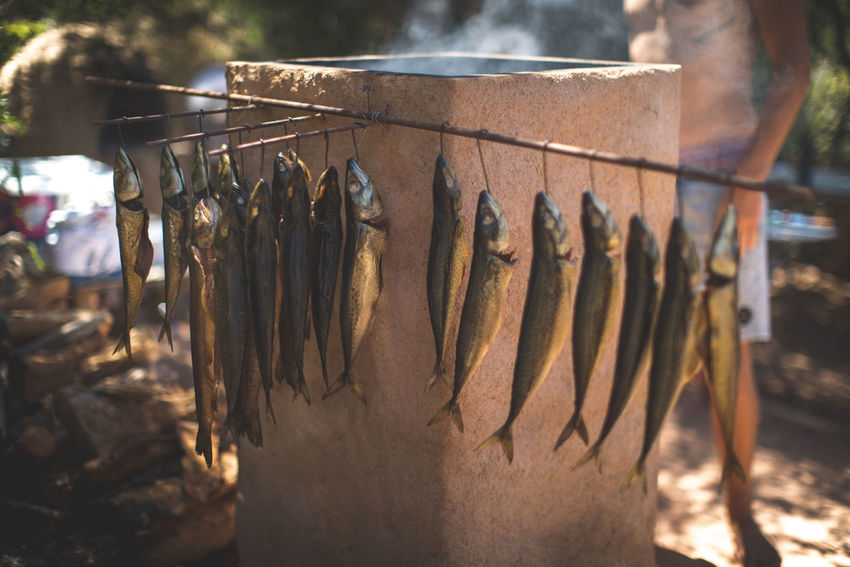 """My friends started smoking fresh fish and they are selling it on local markets in the Algarve in Portugal. It was so much fun to witness the whole process when I was visiting them... so i also made a little video about it. You can watch that on my youtube channel: Flori K --> """"Smoked Fish in the Algarve"""" (https://youtu.be/gtSl6plfvOY) Cooking Friends Portugal Travel Day Delicious Fish Food Freshness Mackerel Outdoors Salmon Smoked Fish"""