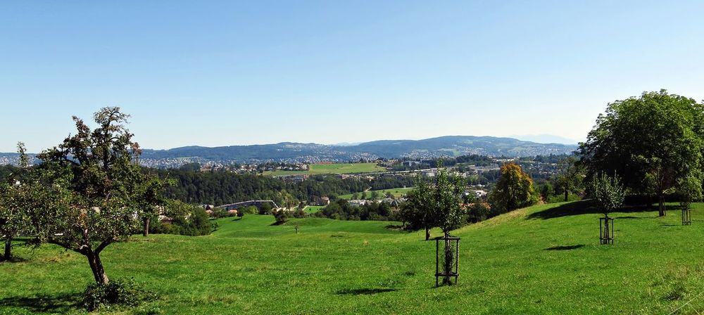 View to Leimbach Adliswil Blue Felsenegg Idyllic Landscape Scenics Sky Switzerland Tranquil Scene Tree Zürich