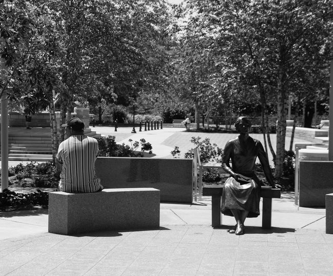 Men Outdoors People Rear View Sitting Statue In The City Women