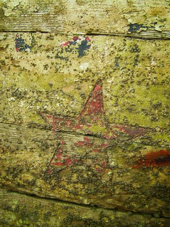 Fishing Boats Rotton_wood Star Shape Barnicles Deterioration Shipwreck On A Boat Peeling Paint Abstract Rotting Wood Textures And Surfaces