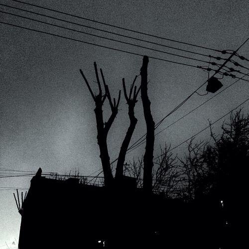 Noir Dark Urban Dark Urban
