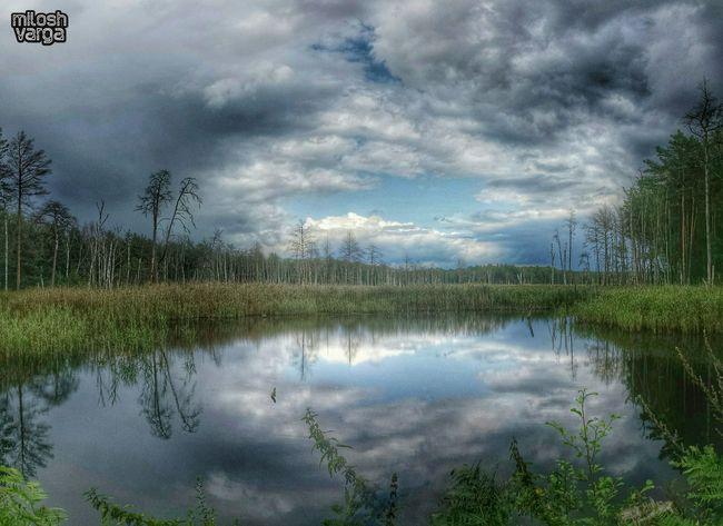 Ausflug in die Dübener Heide - trip to Dübener Heide. AMPt_Nature Royalsnappingartists Nature_seekers Nature_lovers