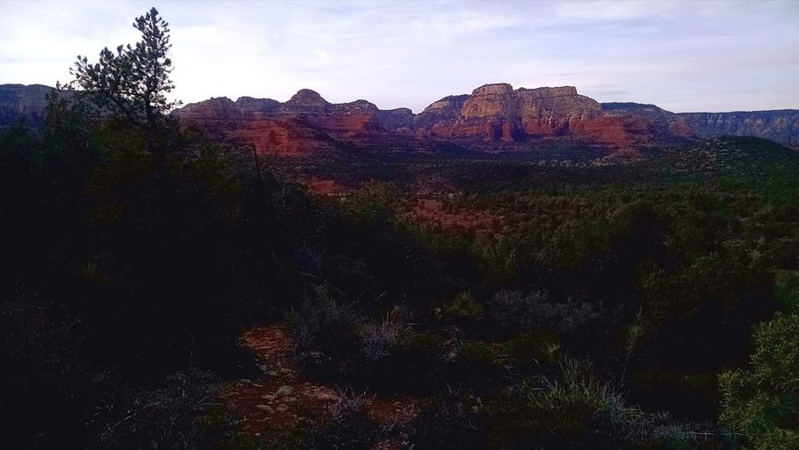Sky Red Cloud - Sky Mountain Landscape No People Nature Tree Outdoors Day Sedona Arizona Freshness Perspectives On Nature