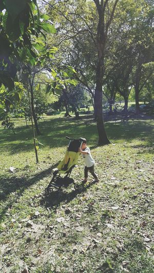 Shadow Tree Outdoors Day Childhood Sunlight One Person Girls Full Length Nature Real People Growth Leisure Activity People Child Grass Children Only Adult Plauinpark Playinpark Playing