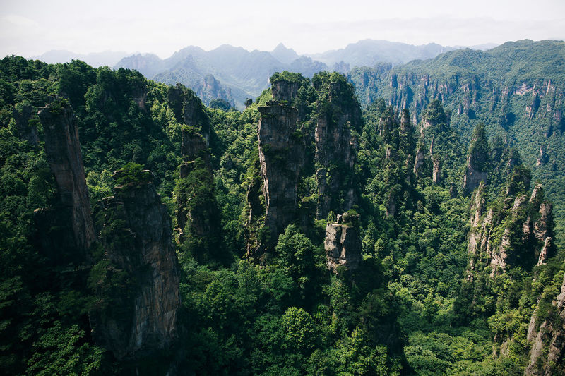 Rock formations at zhangjiajie national forest park