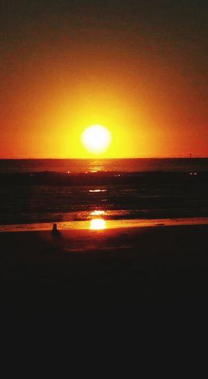 Watching the sun sink into the gulf Sunset_collection Sunset Sinking Into The Gulf At The Beach Goodnight Sun Bright Orange Ball Anna Maria Island Florida Life Refelections Bird Watching