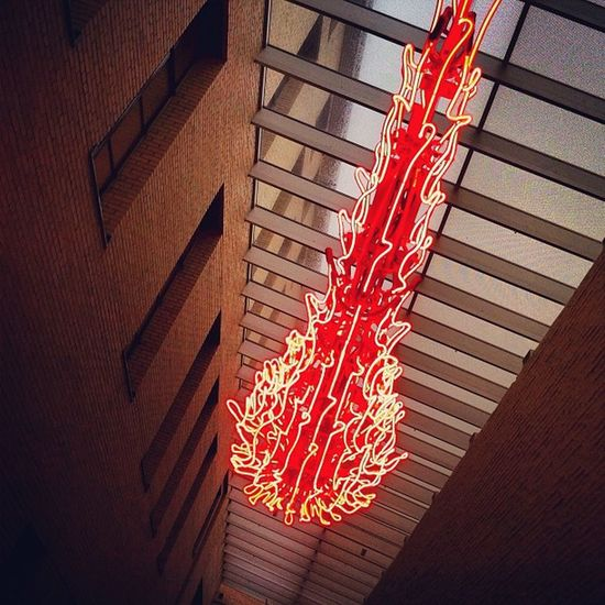 """Neon/Nature"" by Tristin Lowe #neon #glass #philadelphiamuseumofart #pma #philly #sierra #lux #sierra #iphoneography IPhoneography Glass Lux Neon Sierra Philly Pma Philadelphiamuseumofart"