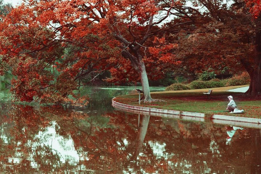 California Davis Arboretum Fishing Nature Colour Of Life Pivotal Ideas My Favorite Place The Great Outdoors - 2017 EyeEm Awards The Great Outdoors - 2017 EyeEm Awards EyeEm Selects The Traveler - 2018 EyeEm Awards
