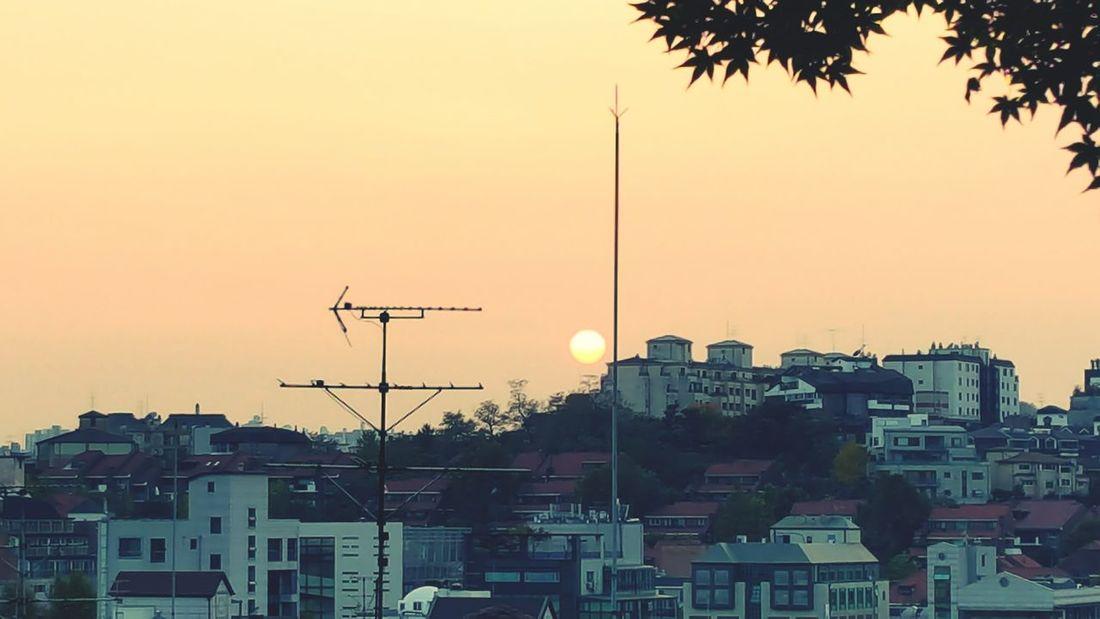 안뇨옹~~~~~ 내일 또 봐🙋 Sunset
