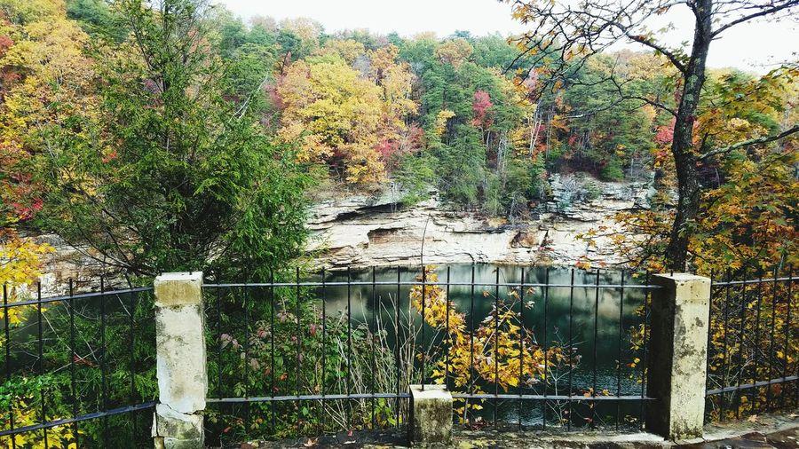 Cliff Lake Fall