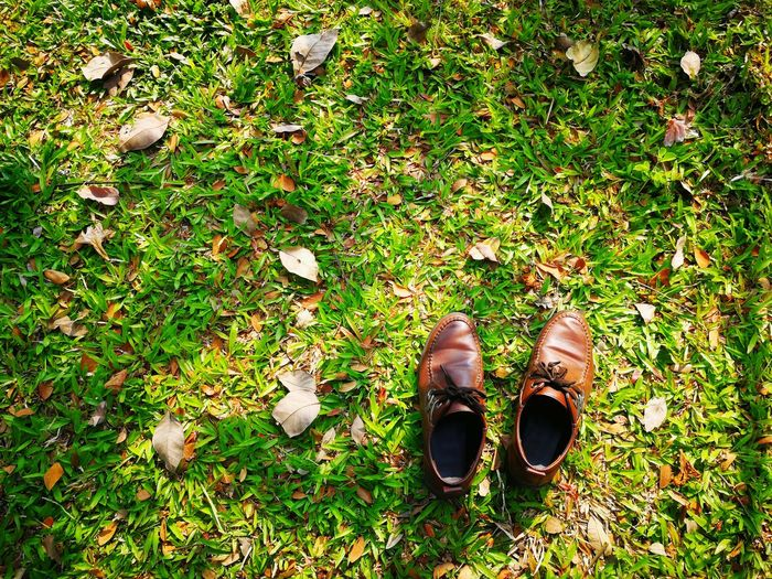 Directly above shot of shoes on grass
