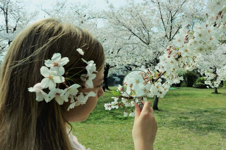 Girl looking at cherry blossom tree through magnifying glass