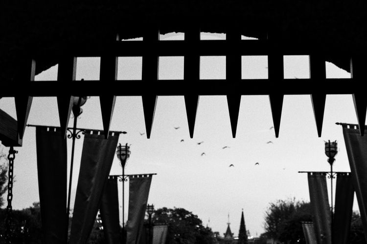 Birds in flight from the drawbridge of Sleeping Beauty Castle, Disneyland CA. Architecture Banners Birds In Flight Black And White Building Exterior Castle Gate Drawbridge  No People Outdoors