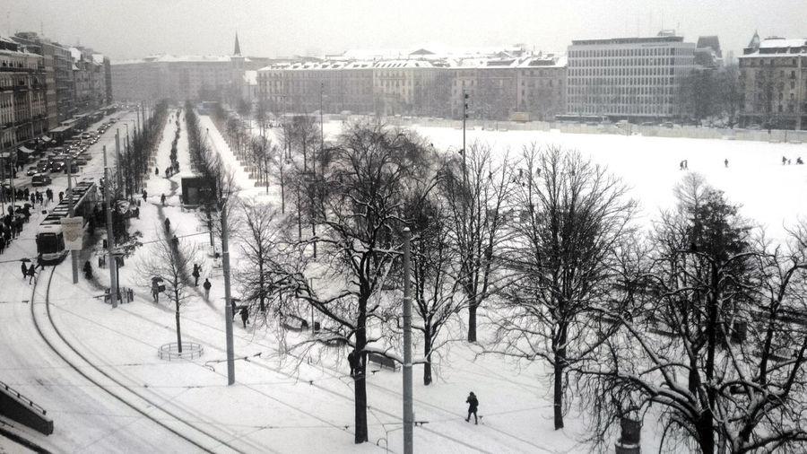 A Breughel feel ... City City Life Cityscape Cold Temperature Outdoors Road Snow Tree Winter