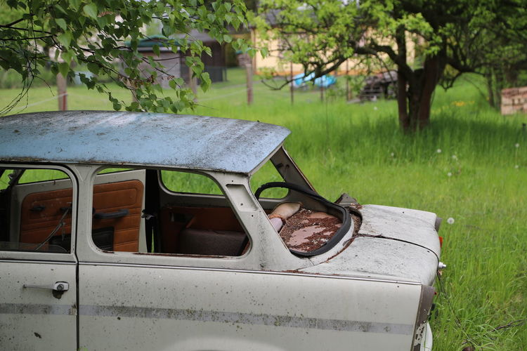 Close-up Day Grass Growth Land Vehicle Memories No People Outdoors Trabant601 Trabbi Transportation Worn Out Wrecked Car Wrecked Trabbi