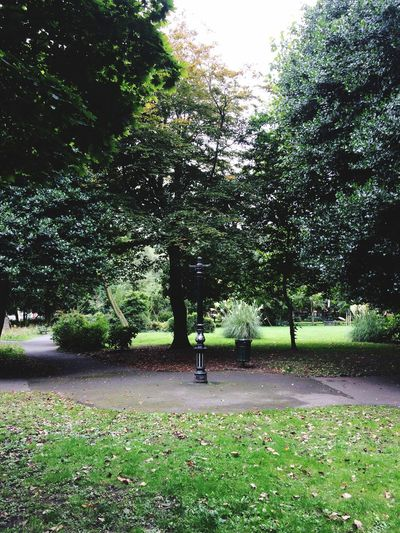 Keepitlocal Loveourcity Victorian Parks Green Green Green!