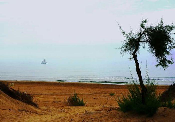 Barca a vela Sea Sea And Sky Sailing Peace And Quiet Sicily