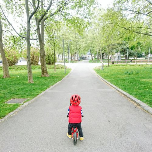Tree Child Outdoors Way Bicycle Fahrrad Kind Enfant Green Be. Ready.