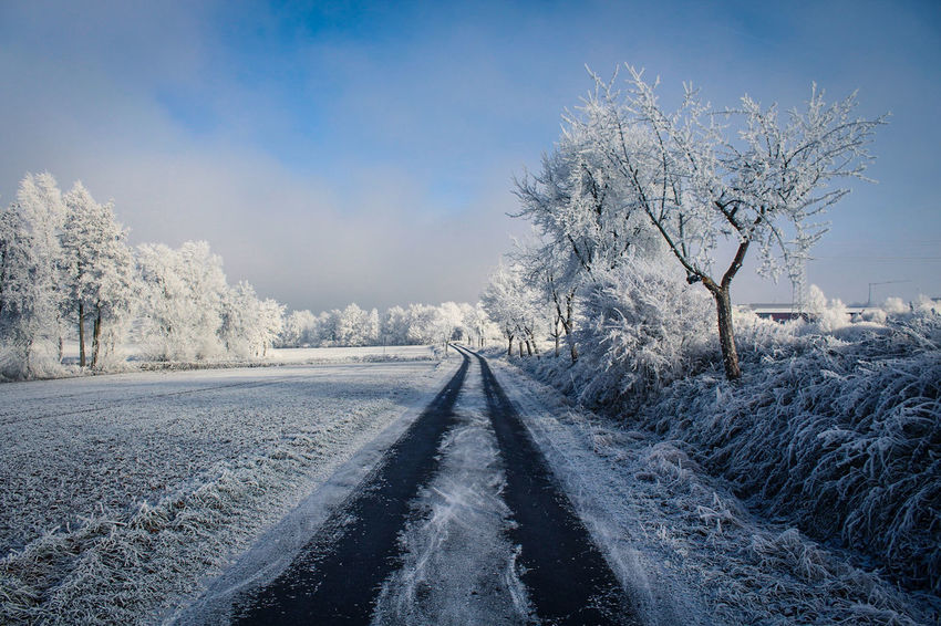 Icy Road... Winter Tree Snow Cold Temperature The Way Forward Nature No People Outdoors Day Fulda Germany Hessen Landscape Canon Canonphotography Canon EOS 1300D Lightroom Silence