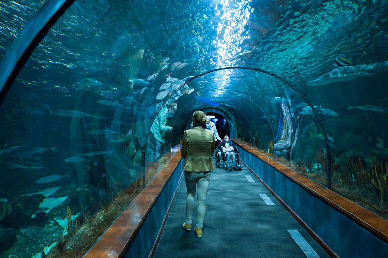 Rear view full length of woman walking in tunnel aquarium