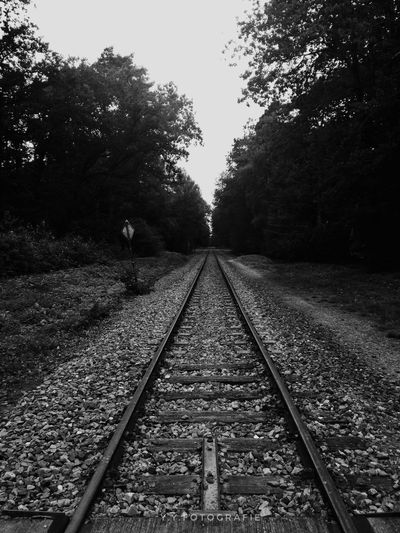 Railway Track Blackandwhite Nature Nature Photography Photography Justgoshoot EyeEmNewHere Eye4photography  EyeEm Best Shots Outside