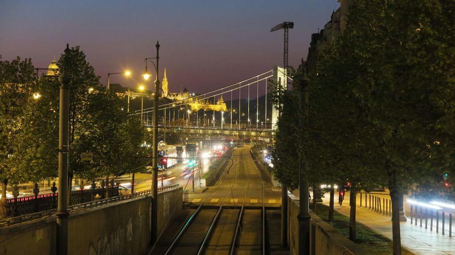 Illuminated street lights on bridge in city at night