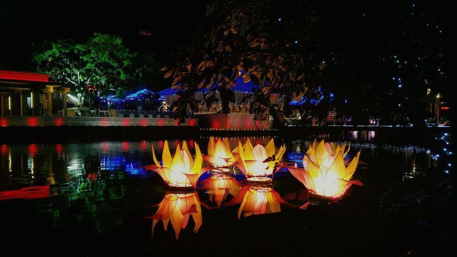 Gangaramaya Temple Colombo Sri Lanka Vesak 2017 Lanterns Light And Shadow Colorful Illuminated Lotus Lotus Reflection Illuminated Water Tree Outdoors No People Lake City Mobile Photography Neighborhood Map
