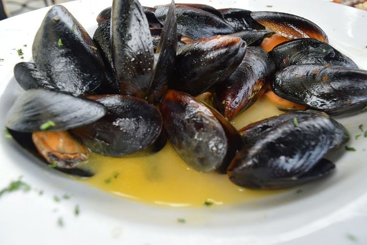 Close-up of mussels served in plate