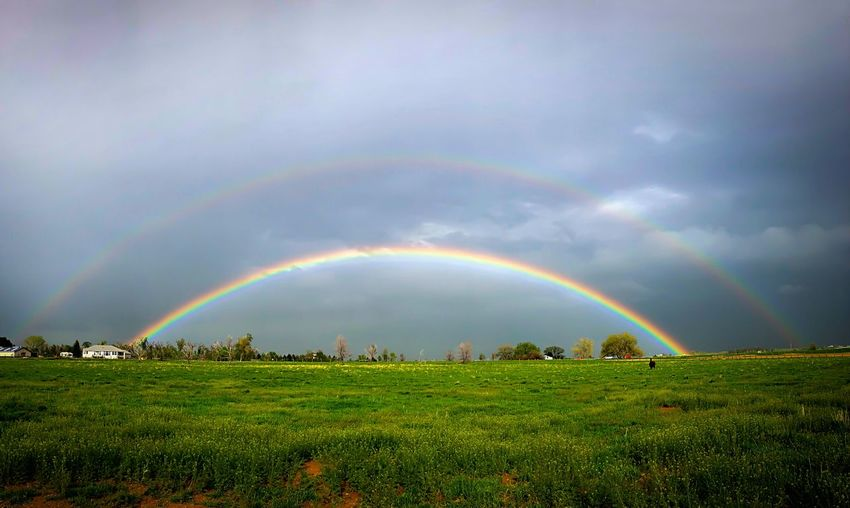 Rainbow Beauty In Nature Cloud - Sky Sky Scenics - Nature Double Rainbow Environment Landscape Multi Colored Plant Nature Idyllic Tranquility Storm Rural Scene Field Wet Tranquil Scene Land No People