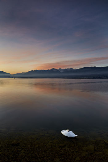 Mood Captures Moody Sky Beauty In Nature Cloud - Sky Floating On Water Idyllic Lake Lake View Mood Mountain Nature No People Non-urban Scene Outdoors Reflection Remote Scenics - Nature Sky Sunrise Sunset Swan Tranquil Scene Tranquility Water Waterfront