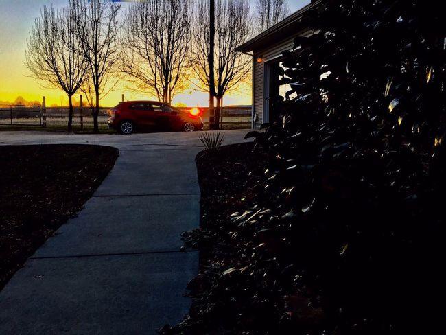 The Week On EyeEm Car Transportation Sunrise Mode Of Transport Tree Morning Light Tree Road Outdoors No People Tennessee