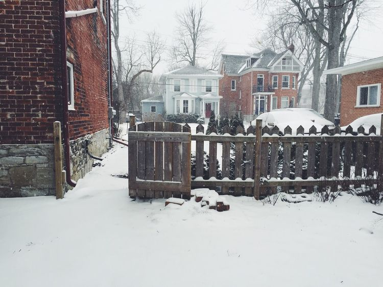 Snowy wonderland Snow Snowing Winter Nature Outdoors Gate Fence Day House Houses
