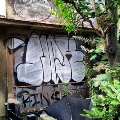 Streetart Aerosolart Graffiti