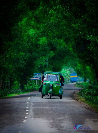Welcome to the green world Landscape_photography Landscape #Nature #photography Landscape_Collection Street Road Green Green World World Nature Nature_collection Nature Photography Naturelovers Nature On Your Doorstep Naturelovers Tree Road Men Tricycle Land Vehicle Moving Road Marking Empty Road Vehicle